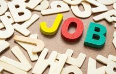 Peste 500 de locuri de muncă vacante în județul Botoșani în această săptămână