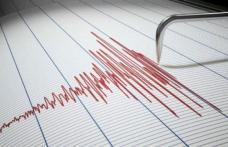 Cutremur cu magnitudinea de 3,2 pe Richter, miercuri seară, în Vrancea