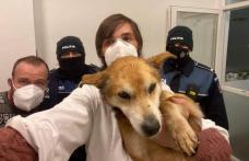 Câine salvat de doi polițiști inimoși – FOTO