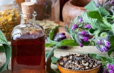 Remedii naturiste pentru diverse boli folosind tătăneasa