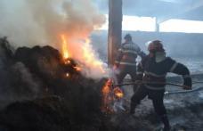 Incendiu la un depozit de furaje din Hudești, stins după șase ore