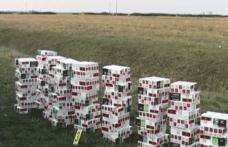 Ţigări în valoare de 145.000 lei descoperite la Româneşti