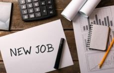 583 locuri de muncă angajate prin AJOFM Botoșani în primele două luni ale anului 2021