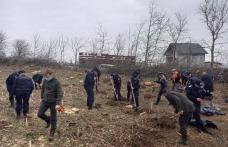 171 de stejari pentru România! La mulți ani, jandarmi botoșăneni!
