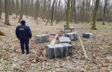 Lovitură de peste 315.000 de lei dată contrabandiştilor de ţigarete în pădurea din apropierea localităţii Baranca - FOTO