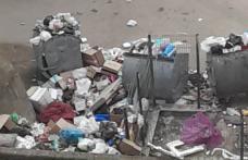 Primim la redacție – Ridicarea gunoiului a devenit o problemă în Dorohoi – FOTO