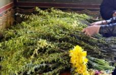 Tradiții și superstiții de Florii. Ce se face în Duminica Patimilor