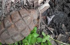 Grenadă descoperită în grădina unui localnic din Cucuteni
