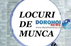 873 locuri de muncă vacante în județul Botoșani în această săptămână