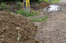 Primim la redacție – Stradă din Dorohoi considerată de unii drept groapă de gunoi - FOTO