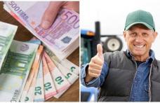 Statul oferă o sumă frumoasă pentru o categorie de români. Cum se primesc banii