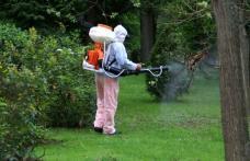 Primăria Dorohoi va efectua acțiuni de dezinsecție împotriva căpușelor și a țânțarilor!