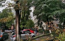În ultimele zece ore, județul Botoșani s-a aflat sub un incidența unui Cod Portocaliu de vijelii!