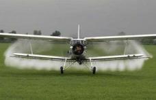 Atenţie, Primăria Dorohoi a demerat o campanie dezinsecţie! Se stropeşte din avion împotriva insectelor!