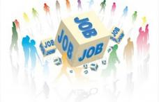 3.923 persoane angajate prin intermediul AJOFM BOTOȘANI în perioada ianuarie-iulie 2021