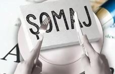 2,25 % -  rata şomajului înregistrat în evidenţele AJOFM Botoșani în luna iulie 2021