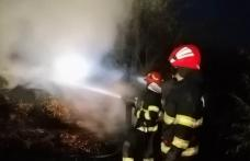 Adăpost de animale și aproximativ 15 tone de furaje distruse de un incendiu la Flămânzi - FOTO