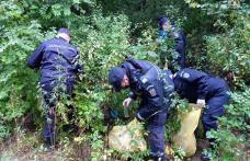 """Jandarmii au spus """"Let's do it, România!"""" și s-au apucat de treabă - FOTO"""