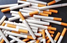 Mii de ţigarete confiscate la Rădăuţi Prut