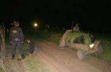 Doi bărbaţi din Pomârla trimiși la închisoare pentru contrabandă cu ţigări cu căruţa