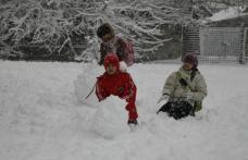Zeci de şcoli închise luni din cauza ninsorii