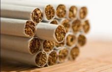 Îmbrăcaţi cu ţigarete de contrabandă la intrarea în ţară