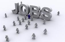 Zilele europene ale locurilor de muncă - 1 milion de locuri de muncă vacante în Europa