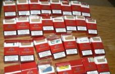 Trafic ilegal de ţigări depistat la Păltiniş
