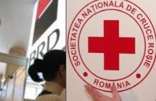 Crucea Roşie continuă sprijinul pentru victimele inundatiilor din iunie – iulie 2010