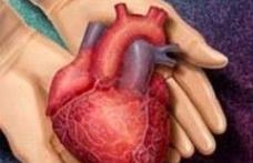 Donarea de organe dupa moarte, optiune in cardul de asigurat