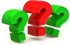 Ce să facă un parlamentar PDL cu funcţia de şef al Vămii?