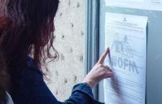 AJOFM Botosani: 6.017 locuri de munca ocupate in perioada ianuarie – octombrie 2010