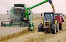 După ce a exportat, România importă acum grâu cu 30% mai scump