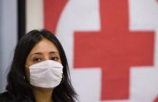 Gripa porcină revine