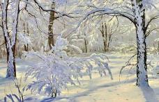 Vom avea iarnă adevărată de Crăciun