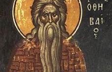 În această lună, în ziua a cincisprezecea, pomenirea preacuviosului părintelui nostru Pavel Tebeul