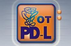 Tineretul PDL-ist in febra alegerilor