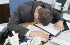 85% din romani, preocupati de munca si in timpul liber