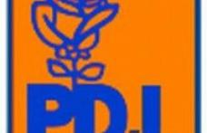 PD-L isi alege noua conducere pe 15 mai
