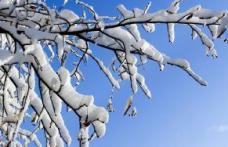 Dorohoi : Vreme rece şi ninsori, în următoarele zile