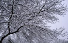 Ninsorile se răresc, dar vremea rămâne rece