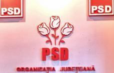 Comunicat PSD Botoșani: Candidații la prezidențiale, între creștere economică și austeritate