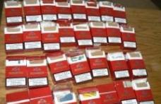 Dosar penal pentru contrabandă de ţigări