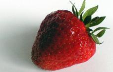 Fructele si legumele adevarate bombe cu otravuri