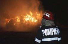 15 tone de furaje distruse în două incendii