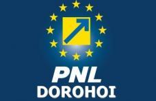 PNL Dorohoi: Vot împotriva lui Mihai Țurcanu pentru șefia partidului