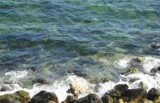 Bomba din Marea Neagra
