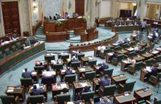 Senatul a adoptat scutirea de impozit pentru părinții copiilor cu handicap, propusă de parlamentarii PSD Botoșani