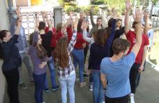 DJST Botoșani: Start pentru Săptămâna Naţională a Voluntariatului!