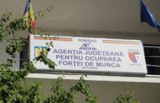 Peste 6 mii de persoane se află în căutarea unui loc de muncă în județul Botoșani